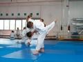 judolager_tenero_-0298