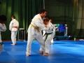 judolager_tenero_-0910