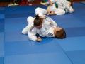 judolager_tenero_-1004