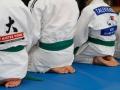 judolager_tenero_-1009