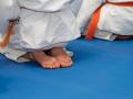 judolager_tenero_-1010