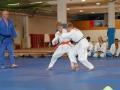 judolager_tenero_-1023