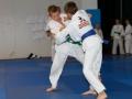 judolager_tenero_-1024