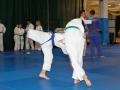 judolager_tenero_-1025