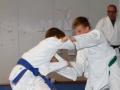 judolager_tenero_-1032