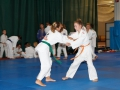 judolager_tenero_-1035