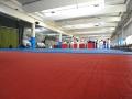judolager_tenero_2016_kinder_jugendliche_060