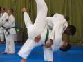 judolager_tenero_2016_kinder_jugendliche_086