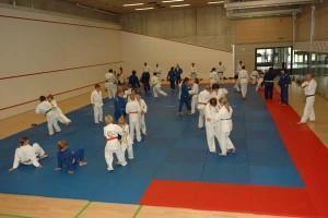 Auf den 200m2 Mattenfläche können wir sehr gut trainieren judo sommerlager
