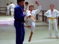 judolager_tenero_1991_0802
