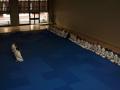 judolager_tenero_2001_010