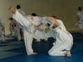 judolager_tenero_2006_046
