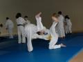judolager_tenero_2006_047