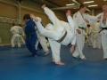 judolager_tenero_2009_060