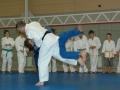 judolager_tenero_2009_098