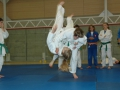 judolager_tenero_2009_100