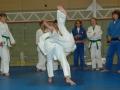 judolager_tenero_2009_102