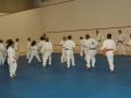 judolager_tenero_2010_033