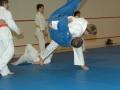 judolager_tenero_2010_050
