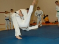 judolager_tenero_2010_051