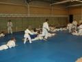 judolager_tenero_2010_058