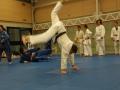 judolager_tenero_2010_159