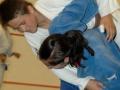 judolager_tenero_2010_170