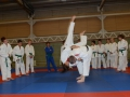 judolager_tenero_2012_011