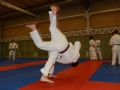 judolager_tenero_2012_060