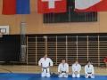 judolager_tenero_2013_050
