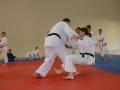 judolager_tenero_2013_052