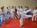 judolager_tenero_2013_053
