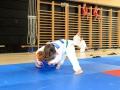judolager_tenero_2013_071
