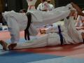 judolager_tenero_2013_072