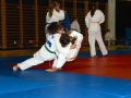 judolager_tenero_2013_150