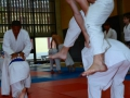 judolager_tenero_2013_164
