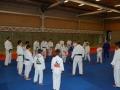 Judolager Tenero 2014